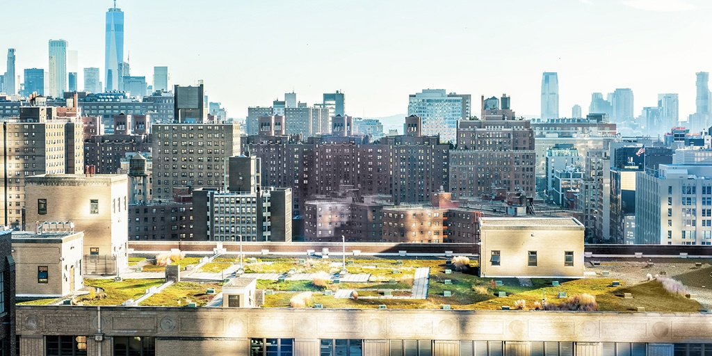Green Design Trends for Adaptive Reuse